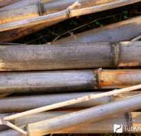 Бамбуковые панели для потолка