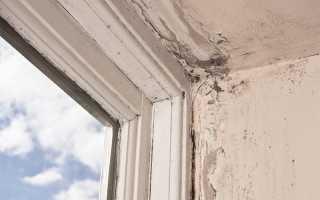 Почему потеют деревянные окна между рамами