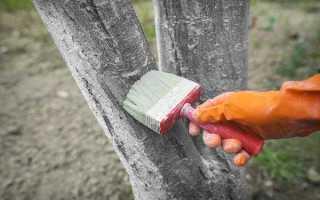 Можно ли водоэмульсионной краской красить дерево