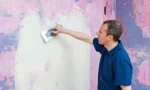 Покраска стен после штукатурки