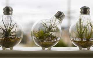 Светодиодные лампы для аквариума как выбрать