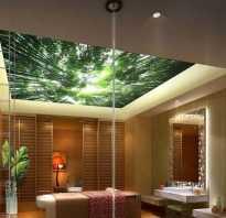 Потолок для ванной комнаты какой лучше